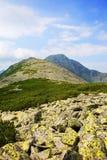 Montanhas majestosas de Retezat Fotos de Stock