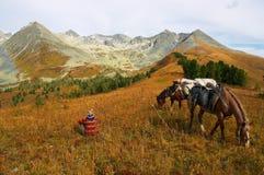 Montanhas, menina e dois cavalos. Foto de Stock Royalty Free