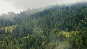 Montanhas na névoa Imagem de Stock Royalty Free