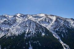 Montanhas na primavera Imagem de Stock