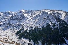 Montanhas na primavera Fotografia de Stock