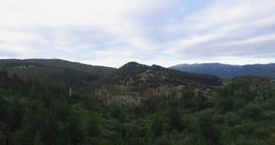Montanhas, natureza, árvores e animais video do zangão 4k filme