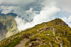 Montanhas nebulosas Imagem de Stock Royalty Free