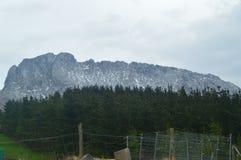 Montanhas nevado das opiniões de parque nacional de Gorbeia de Urigoiti através de Forest Of Fir Trees Paisagens das montanhas da Foto de Stock