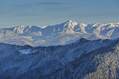 Montanhas nevado de Ciucas, Romênia Fotografia de Stock