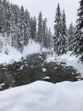 Montanhas nevado na geleira Hot Springs Fotos de Stock
