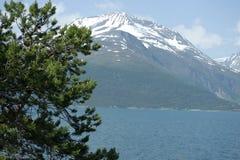 montanhas Neve-tampadas em Noruega Imagem de Stock