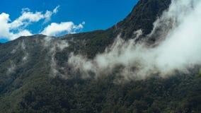 Montanhas nevoentas verdes imagem de stock royalty free
