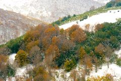 Montanhas no alto Campoo Imagens de Stock Royalty Free