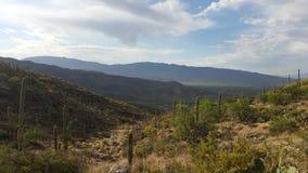 Montanhas no Arizona Imagem de Stock