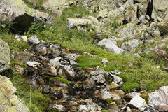 Montanhas no vale de Tena, Pyrenees Panticosa Fotografia de Stock Royalty Free
