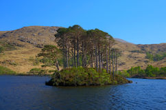 Montanhas ocidentais de Eilt Lochaber do Loch da ilha do lago de Escócia perto de Glenfinnan e de Lochailort e a oeste de Fort Wi Fotos de Stock