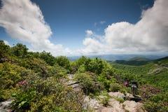 Montanhas ocidentais do NC do pináculo Craggy dos jardins imagens de stock