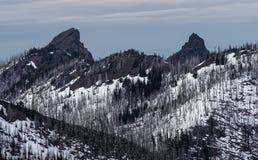 Montanhas olímpicas Foto de Stock