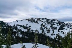 Montanhas olímpicas Fotos de Stock
