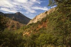 Montanhas orientais do Arizona Fotos de Stock