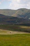 Montanhas parque nacional da porta dourada, África do Sul Imagem de Stock