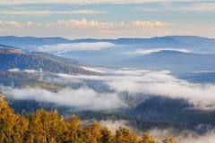 Montanhas parque nacional de Hartz, Tasmânia foto de stock royalty free
