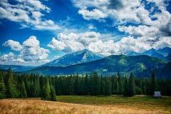 Montanhas polonesas foto de stock