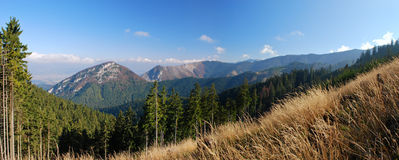 Montanhas que crescem estágios fotografia de stock