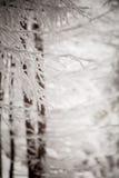 Montanhas recolhidas do detalhe do inverno foto bonita Fotos de Stock Royalty Free