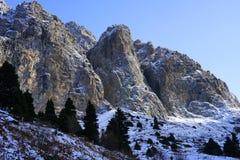 Montanhas rochosas de Zaili Alatau cobertas pela neve com a linha floresta dos pinheiros de 9f Fotografia de Stock