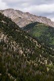 Montanhas rochosas do Mt princeton Colorado imagens de stock royalty free