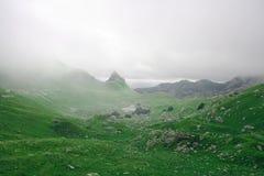 Montanhas selvagens da névoa Imagens de Stock