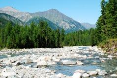 Montanhas, shumack, o Lago Baikal, rio, água, viagem, abeto vermelho, floresta, montanha, Rússia Fotografia de Stock Royalty Free