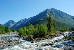 Montanhas, shumack, o Lago Baikal, rio, água, viagem, abeto vermelho, floresta, montanha, Rússia Foto de Stock Royalty Free