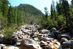 Montanhas, shumack, o Lago Baikal, rio, água, viagem, abeto vermelho, floresta, montanha, Rússia Foto de Stock