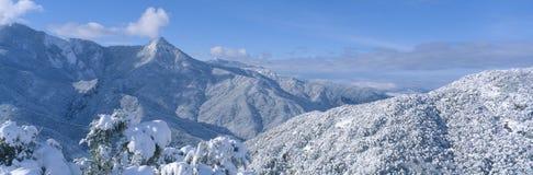 Montanhas Snow-covered no parque nacional de Sequoia Foto de Stock