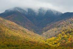 Montanhas tampadas neve e cores da queda Imagem de Stock Royalty Free