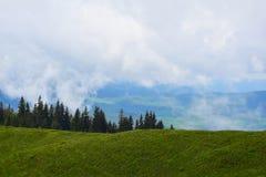 Montanhas ucranianas Fotografia de Stock