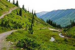 Montanhas, vales, e wildflowers Fotos de Stock