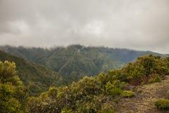 Montanhas verdes de Madeira, Portugal Fotografia de Stock