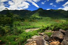 Montanhas verdes de Vietnam Imagem de Stock
