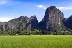 Montanhas verdes do campo e da pedra calcária de almofada do arroz em Vang Vieng, cidade de estância turística popular no Lao PDR fotos de stock royalty free