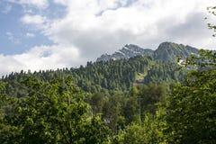 Montanhas verdes dos cumes fotos de stock