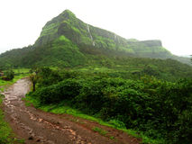 Montanhas verdes luxúrias Foto de Stock Royalty Free