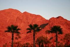Montanhas vermelhas no alvorecer Imagens de Stock