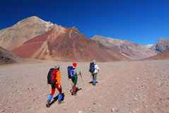 Montanhas vulcânicas de aconcagua do vale dos alpinistas Fotos de Stock Royalty Free