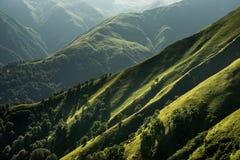 Montanheses verdes da montanha com árvores, pastos, prados e os vales profundos na região Tusheti Fotos de Stock Royalty Free