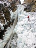 Montanhista de gelo masculino em um revestimento vermelho que rappelling fora de uma queda de gelo de desmoronamento perigosa do  fotografia de stock royalty free