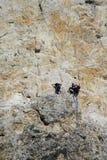 Montanhistas na rota da parede do alpinista foto de stock