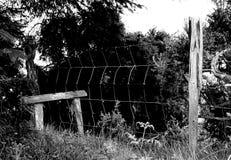 Montant, en bois Photographie stock libre de droits