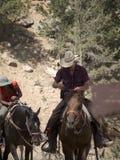 Montant en Bryce Canyon National Park, l'Utah, Etats-Unis Photographie stock libre de droits