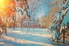 Montant féerique rural couvert de neige hivernal d'instagram de vue Photos libres de droits
