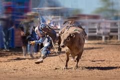 Montar a caballo Bucking de Bull en un rodeo del país imagenes de archivo