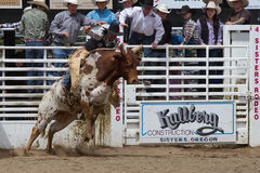Montar a caballo de Bull - hermanas, rodeo 2011 de Oregon Imagenes de archivo